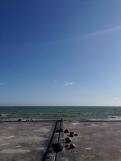 Brighton XVI