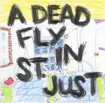 """a dead fly in st. just"", 2018"